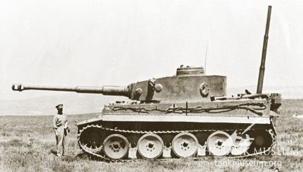 Captured Tiger I