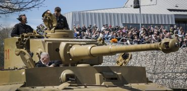 Tiger 131 ebay auction