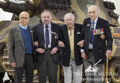 Tiger Collection Veterans