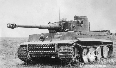Tiger 131 after capture
